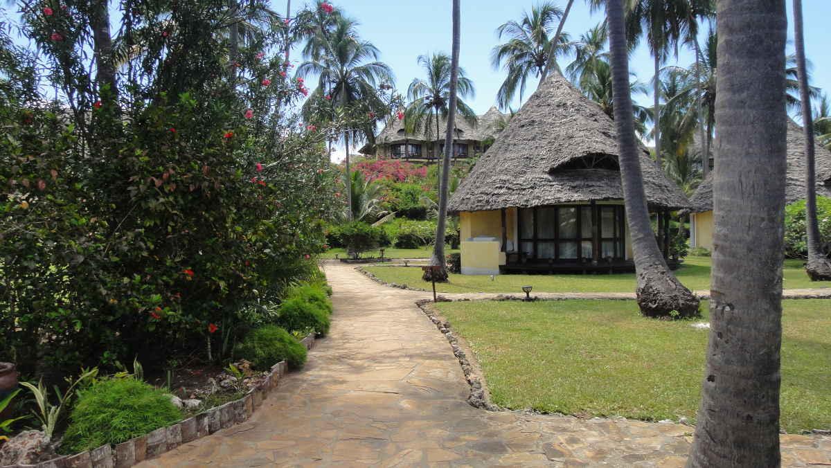 Zanzibar hyddor